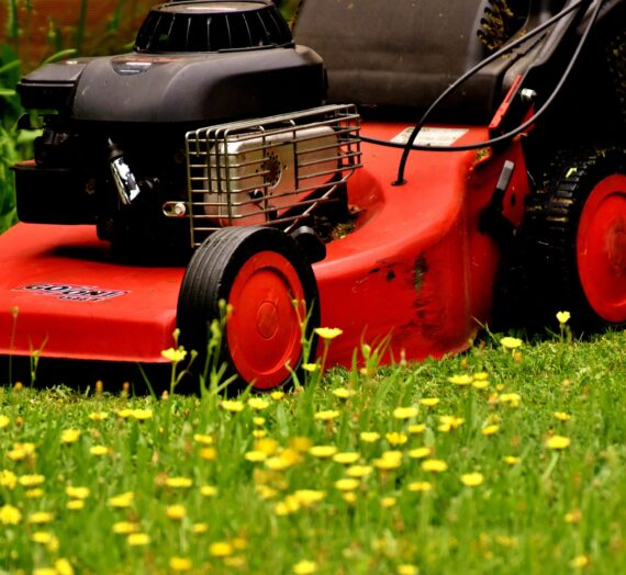 Best Lawn Mower Features And Buying Guide